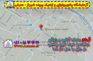 آدرس و شماره تلفن آزمایشگاه پیوند شیراز