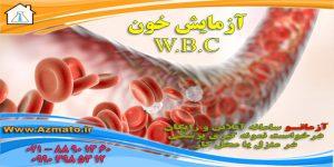 wbc در جواب آزمایش خون چیست